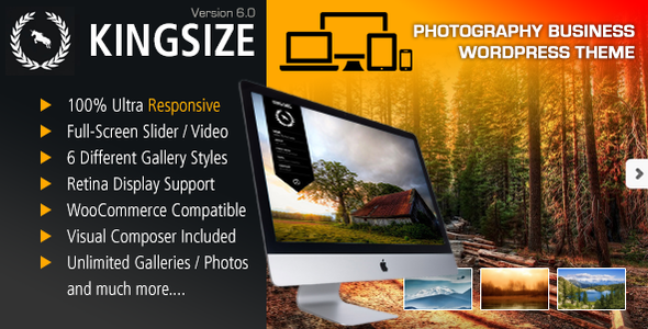 Photo of Get KingSize Fullscreen Photography Theme Download