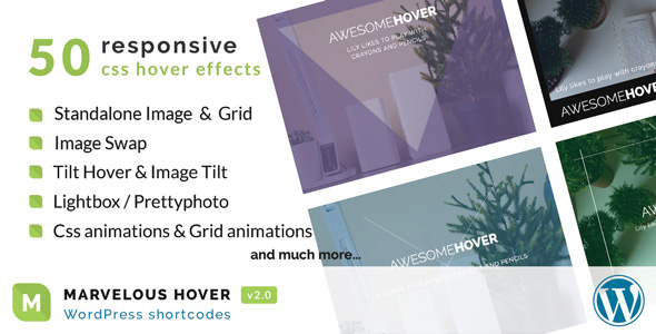 Photo of Get Marvelous Hover Effects | WordPress plugin Download