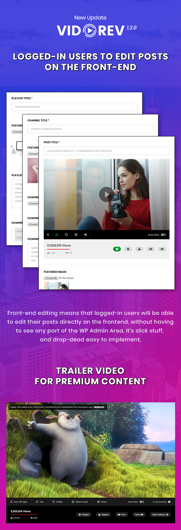 VidoRev - Video WordPress Theme - 6