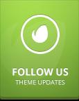 Follow us on ThemeForest