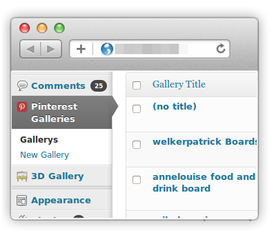 Pinterest to WordPress - WordPress Pinterest Gallery Plugin - 17