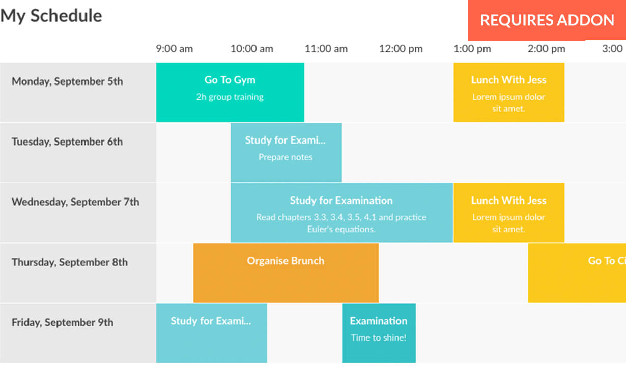 Responsive Timetable for WordPress - 6
