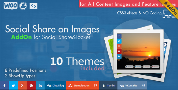 Social Share & Locker Pro WordPress Plugin - 20