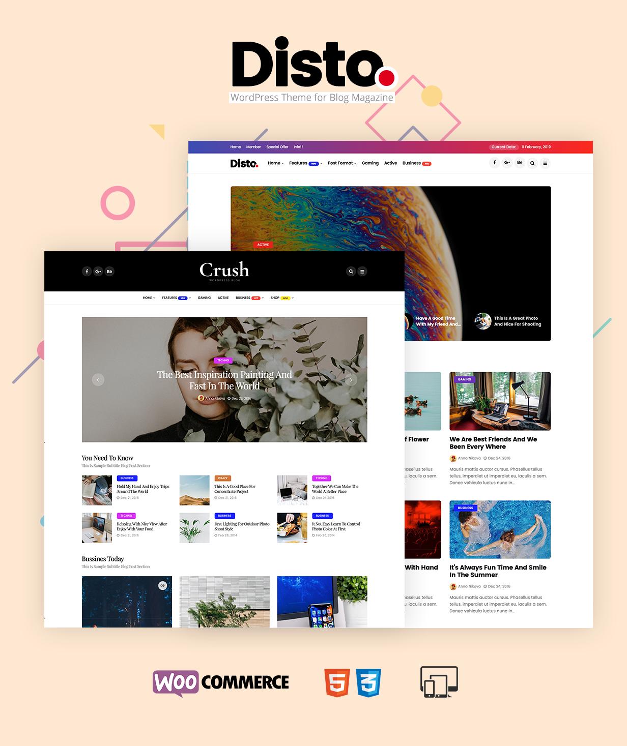 Disto - WordPress Blog Magazine Theme - 1