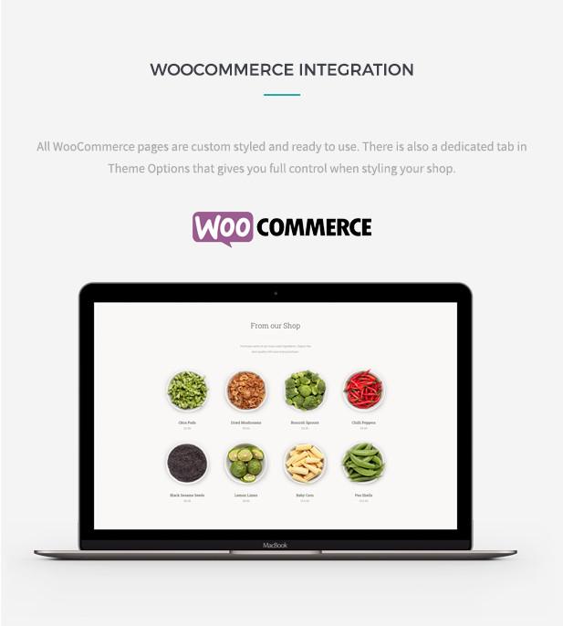 Sage - WordPress Restaurant Theme - 6