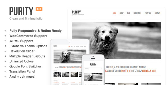 Purity: Responsive, Minimal & Bold WP Theme