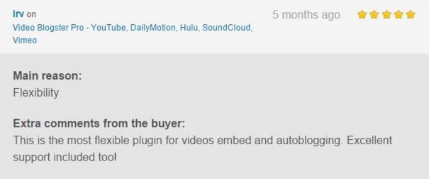 Video Blogster Pro - import YouTube videos to WordPress. Also DailyMotion, SoundCloud, Vimeo, more - 13