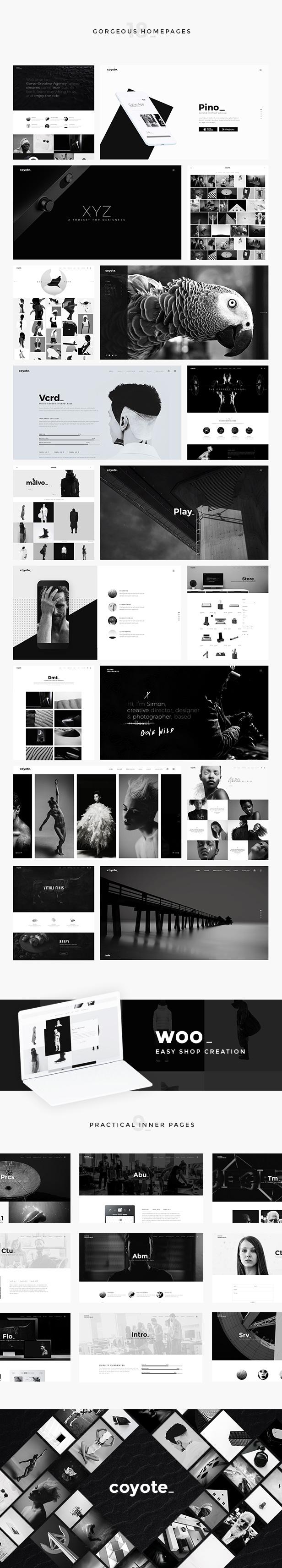 Coyote - Multipurpose WordPress Theme - 1